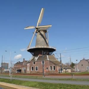 Free tour Delft